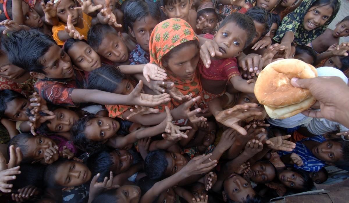 Rohingya Anchal (3)